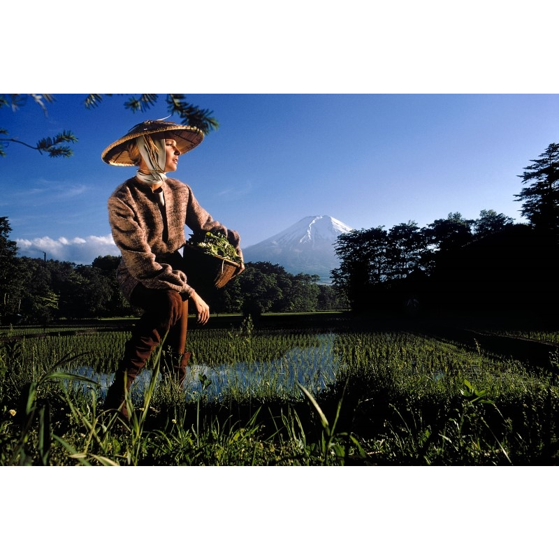 Japan: Rice Field in Oshino Village, near Mt. Fuji (Edition 14/100), 1969