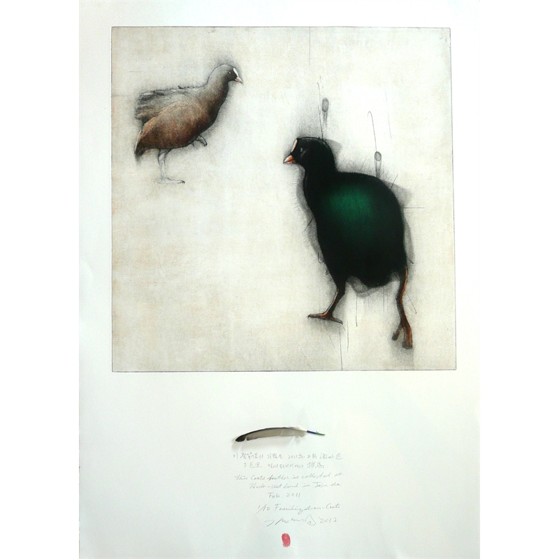 Fossilization:  Coots  (Artist's Proof), 2004