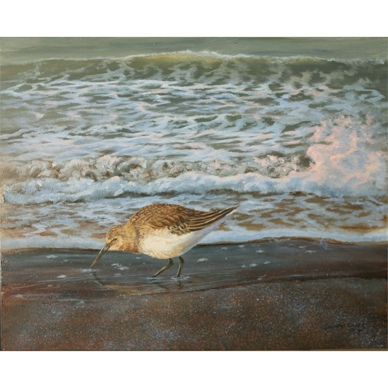 Sandpiper and Surf II, 2019