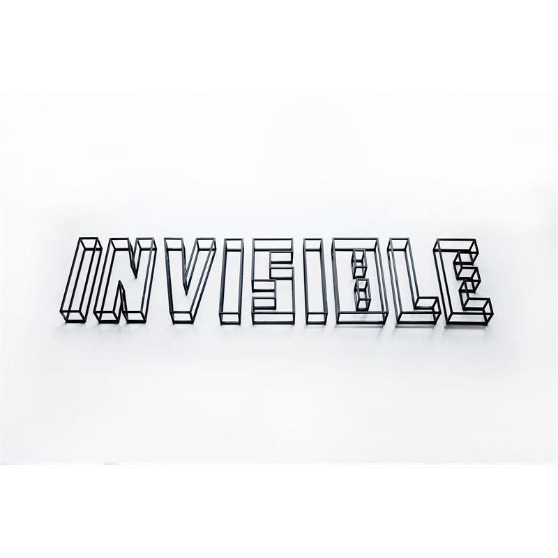 Invisible, 2016