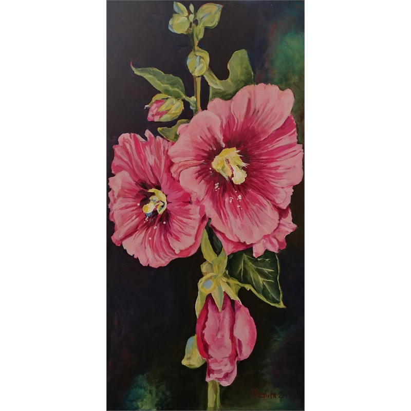 Tall Hollyhock, 2017