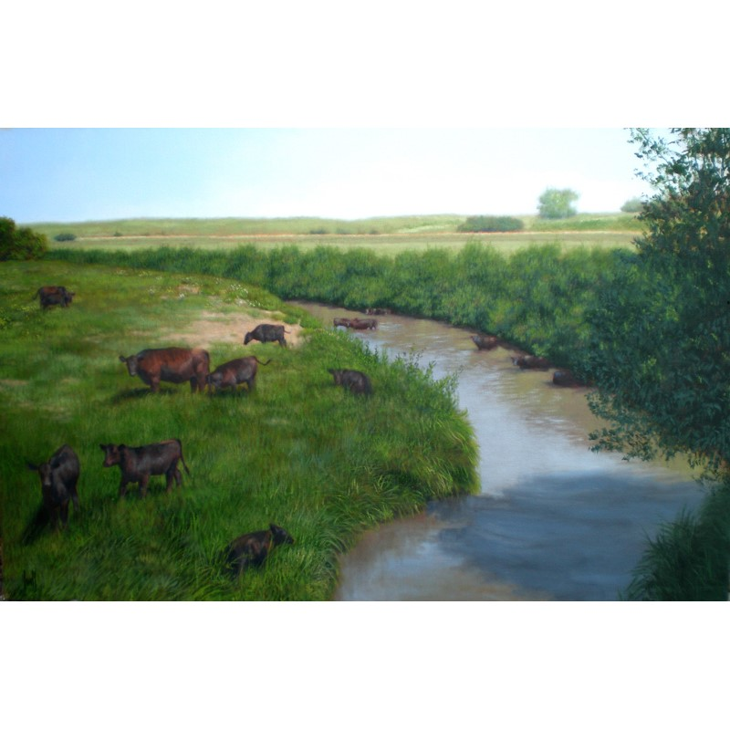 Cattle at Silver Creek