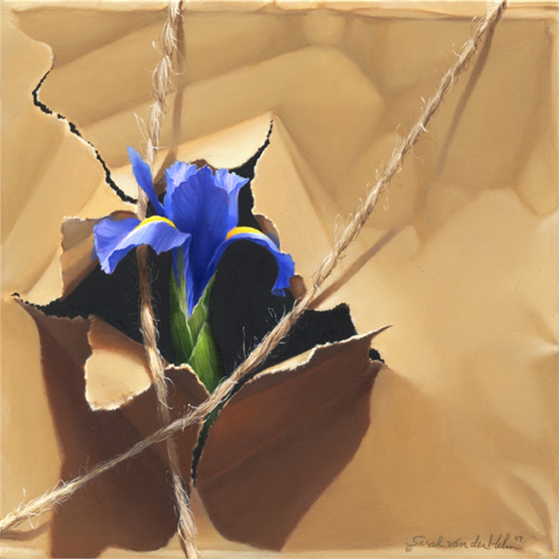 Brown Paper With Iris, 2019