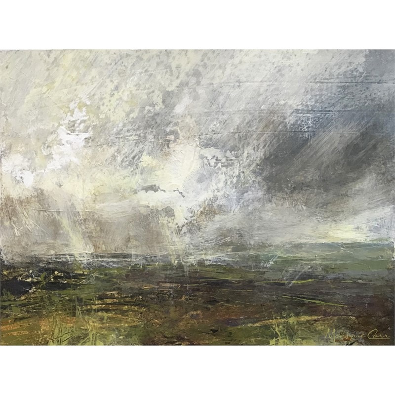 Rain on the Plain, 2018