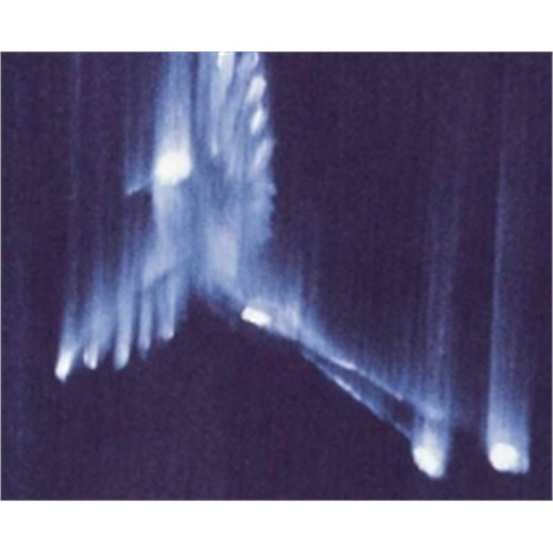 Falling Birds IV (21/60), 2002