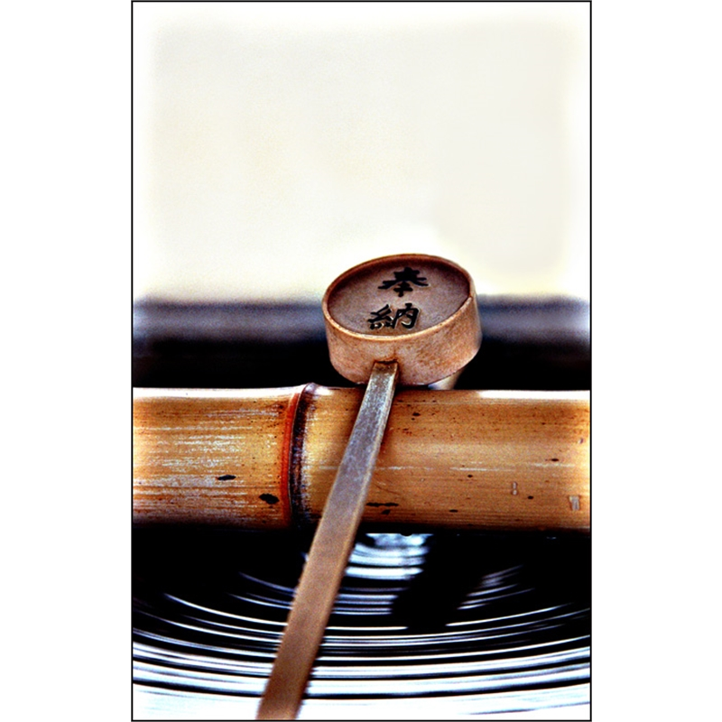 Bamboo Ladle for Purification, 2007