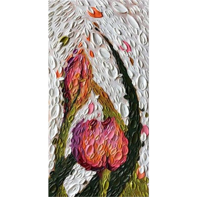 Sherbert Tulips 3