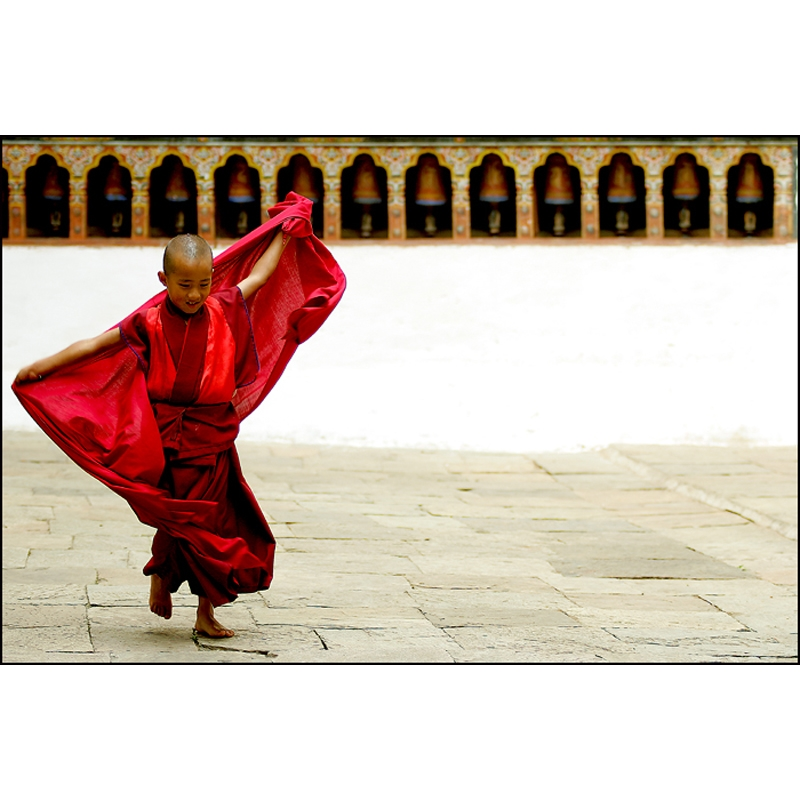 Young Monk, 2007