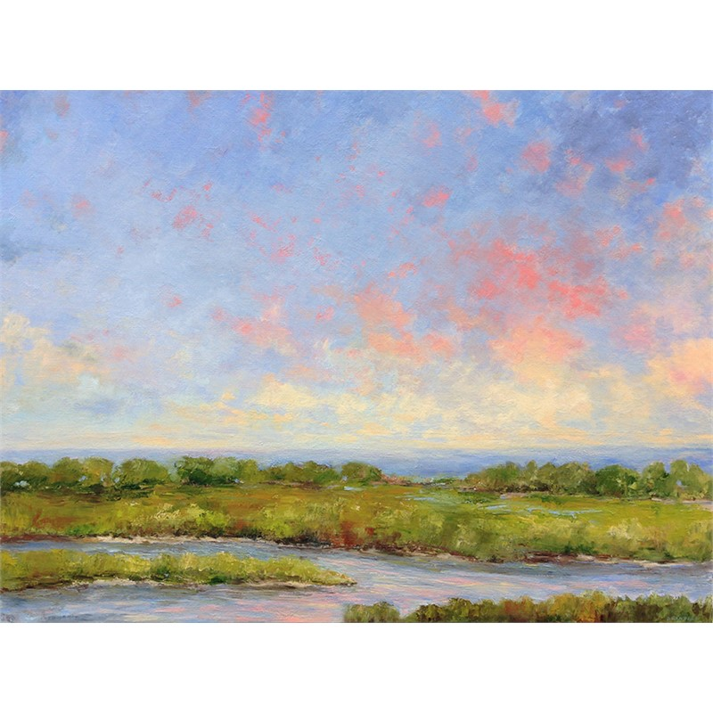 Marsh and Ocean