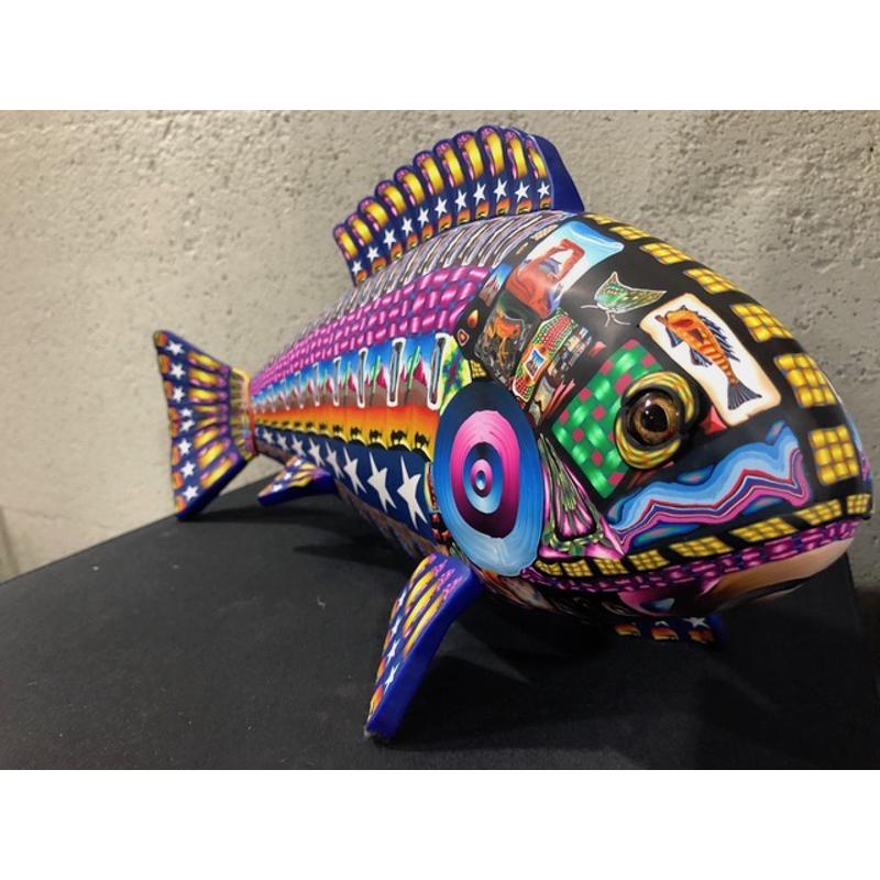 Large Fish, 2/2/2020