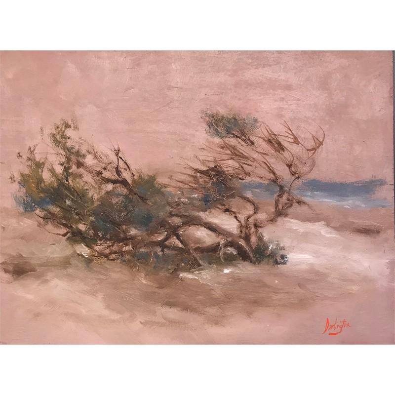 Study of Windblown Cedar, 2019