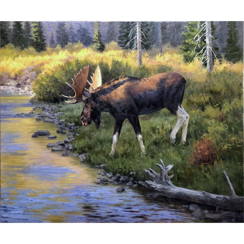 Willow Creek Wanderer, 2020