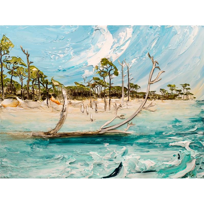 Crooked Island Seascape