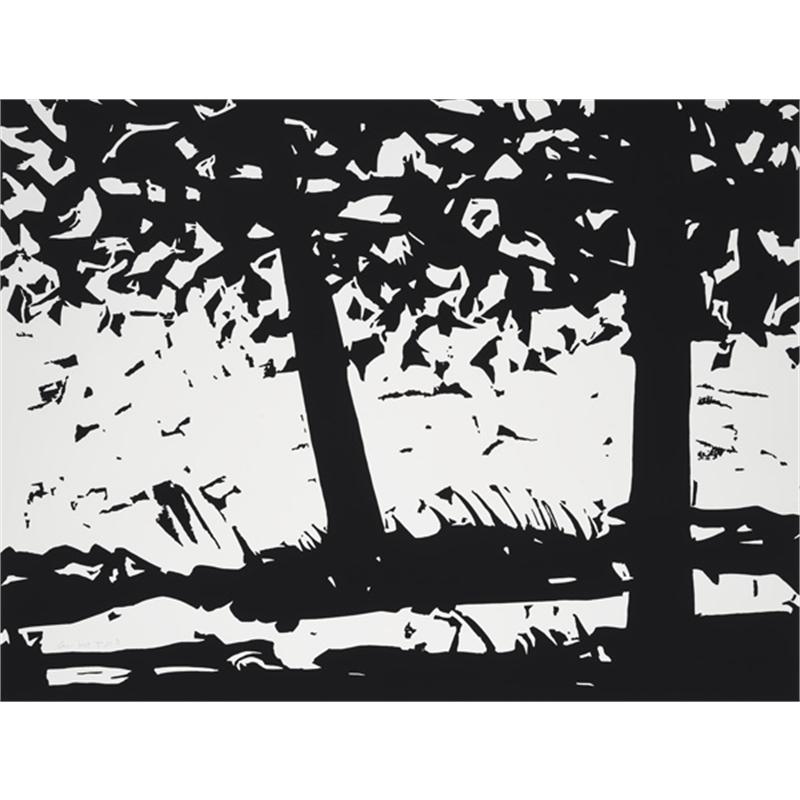 Maine Woods 1 (/40), 2013