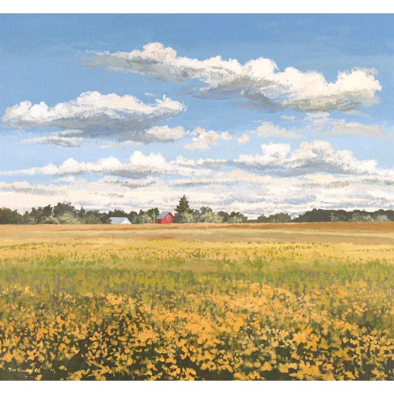 Seidler's Field