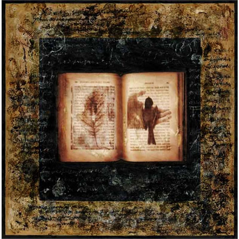 Journal - Book of Dreams, 2007