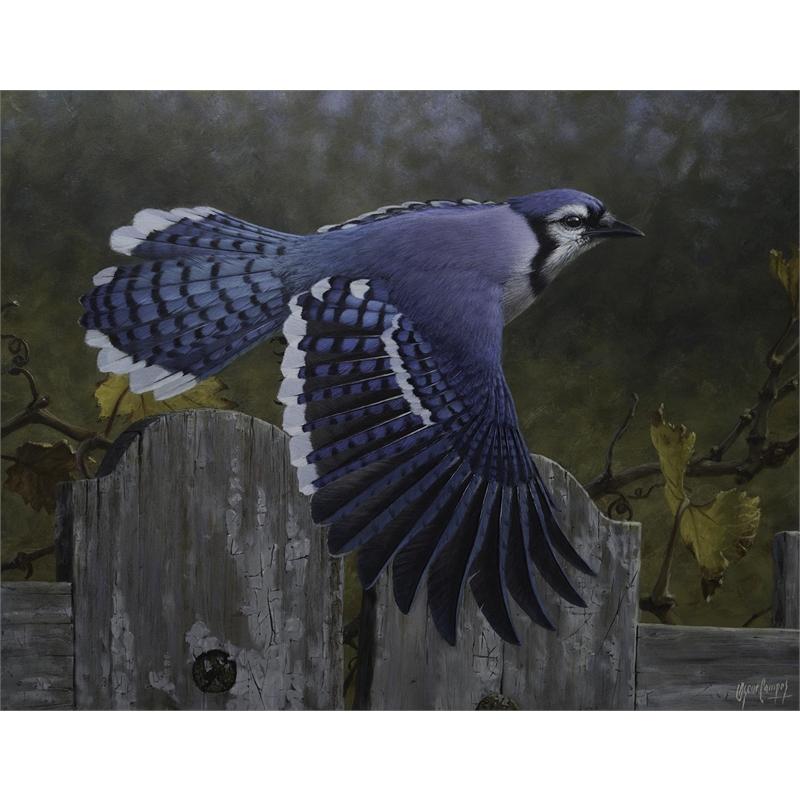 Vuelo Sobre el Cerco (Bluejay)