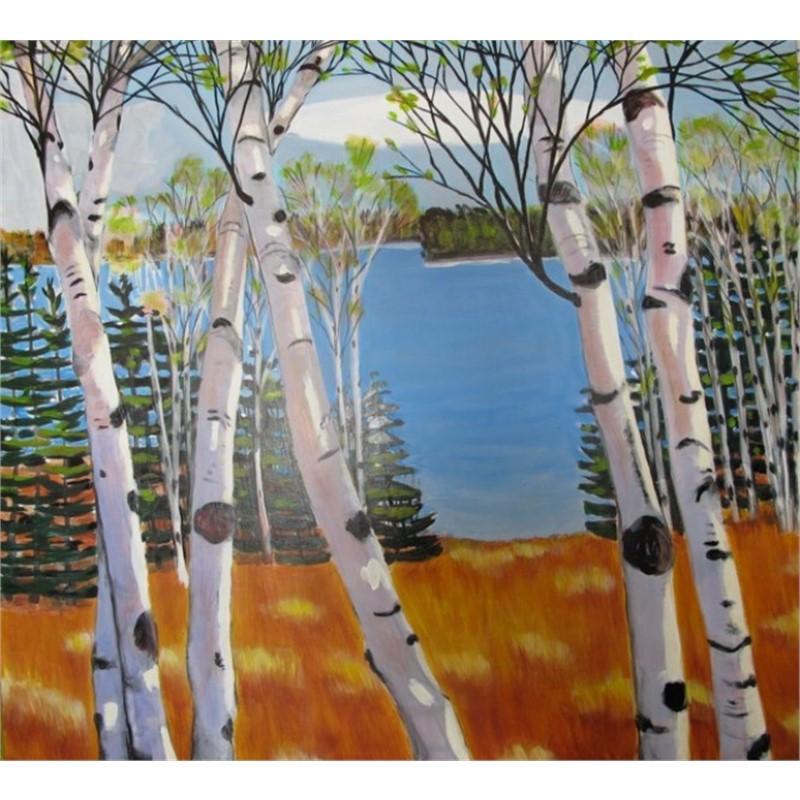 Sunlight on Birches