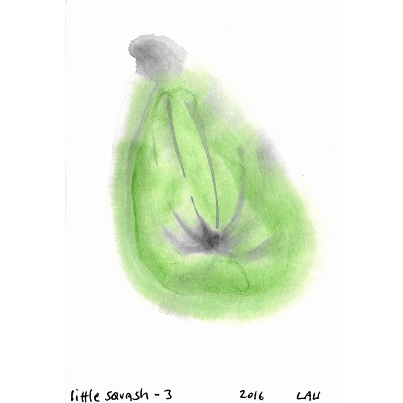 little squash #3