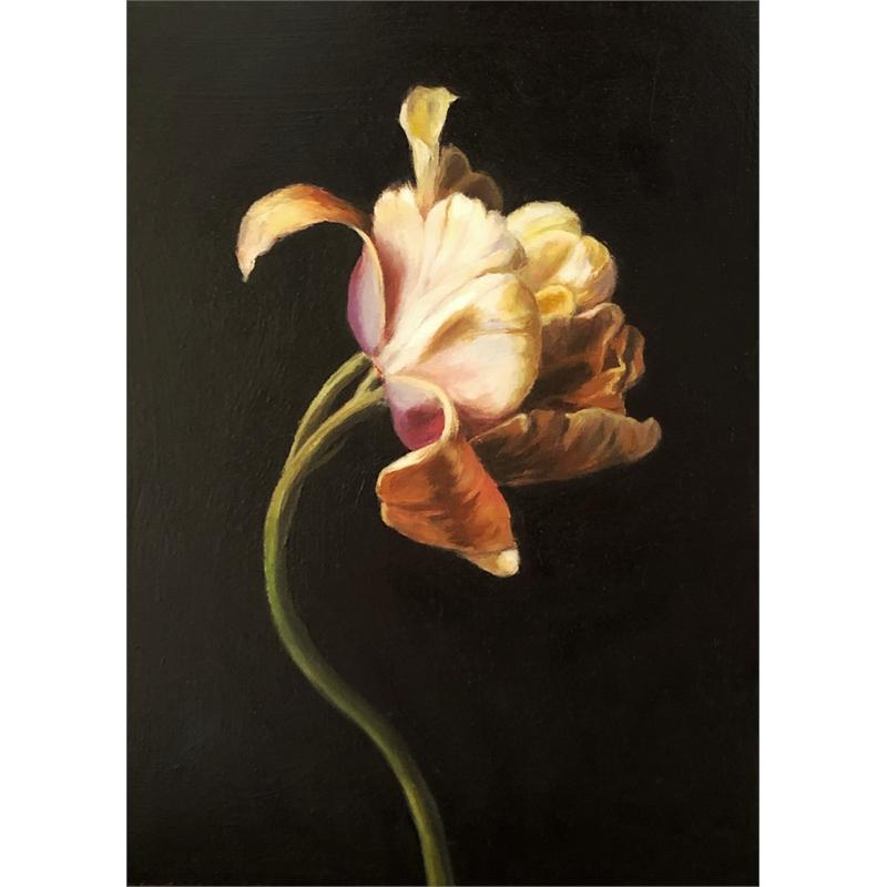 Unfolding (Tulip)