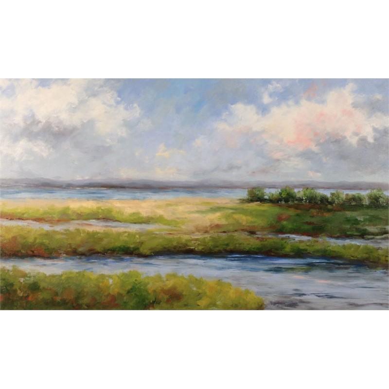 Marsh At Gooserocks