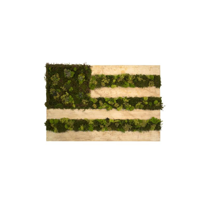 """Organic Flag Study .1"" by Autumn Buck"