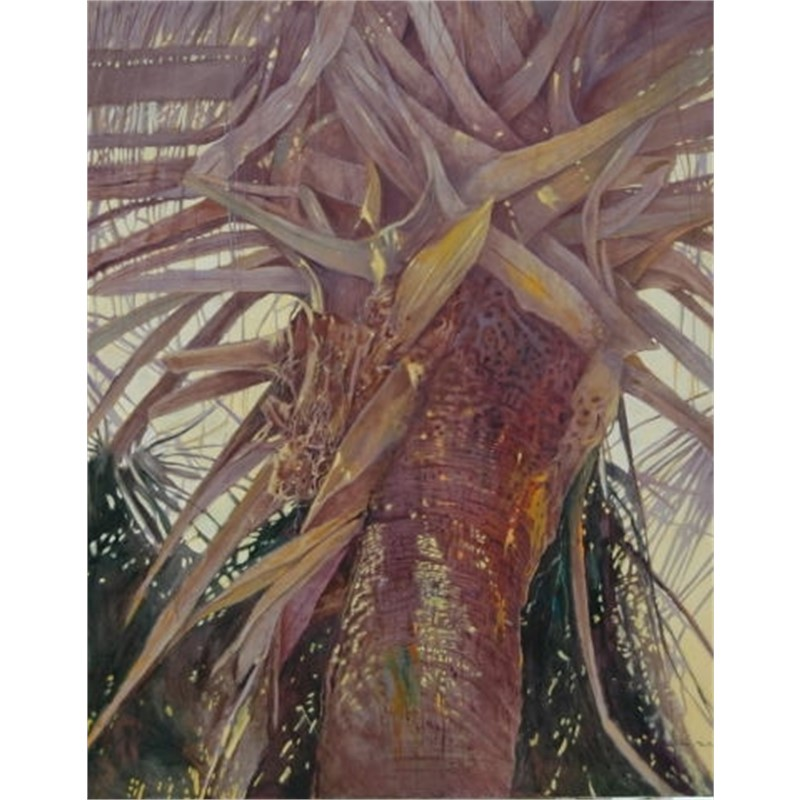 Crown of the Palm by Patricia Madison-Lusk -- Giclee Prints