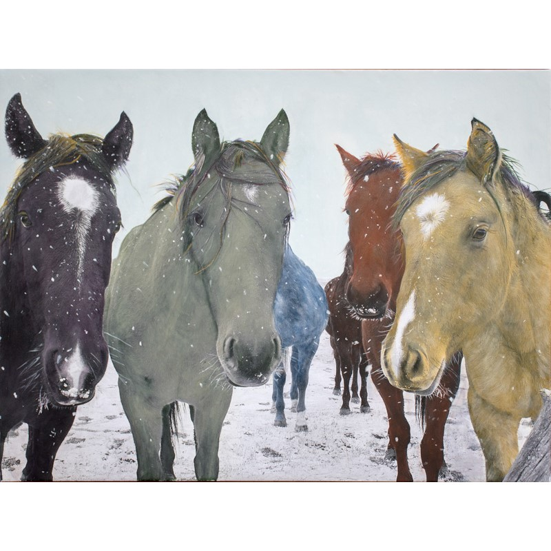 Six Snowy Horses with Matt Green