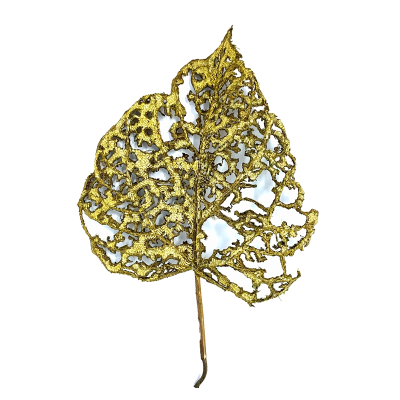 The Impermanence of Life: Mulberry Leaf I
