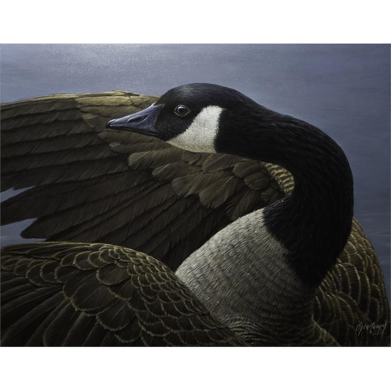 En Su Plenitud (Canadian Goose)