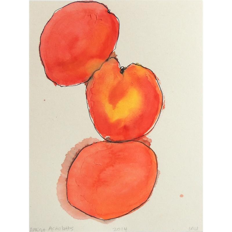 apricot acrobats, 2014