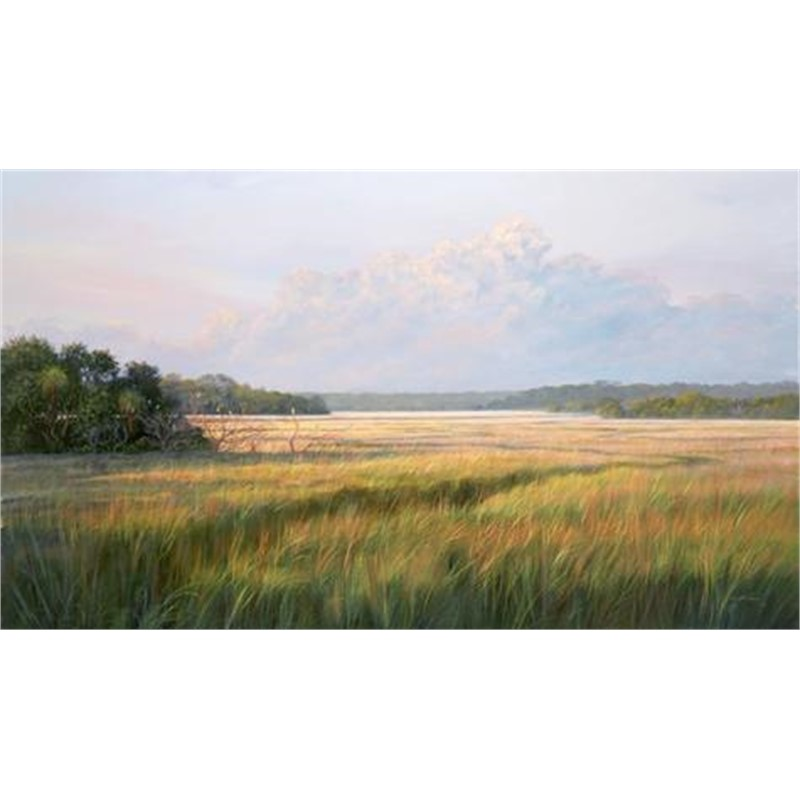 Distant Marsh by Douglas Grier -- Giclee Prints
