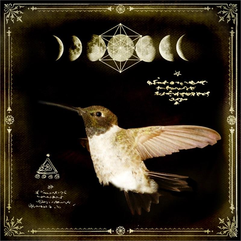 Divine Messenger 33, 2019