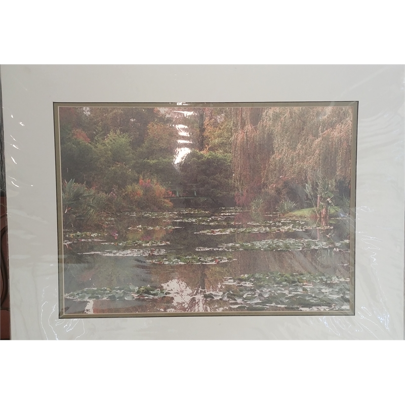Monet's Pond, 2019