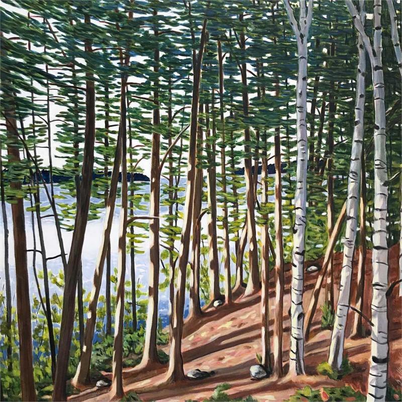 Damariscotta Pines and Birches