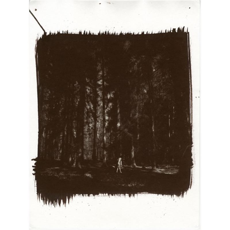 Lilly dans la forêt, 2018