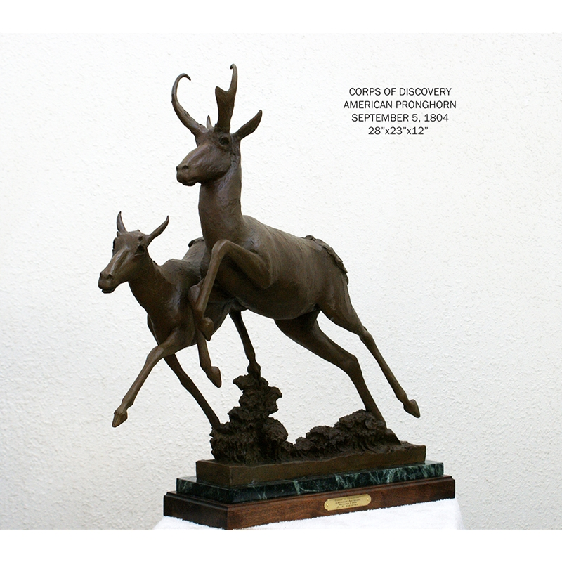 American Pronghorn (3/30)