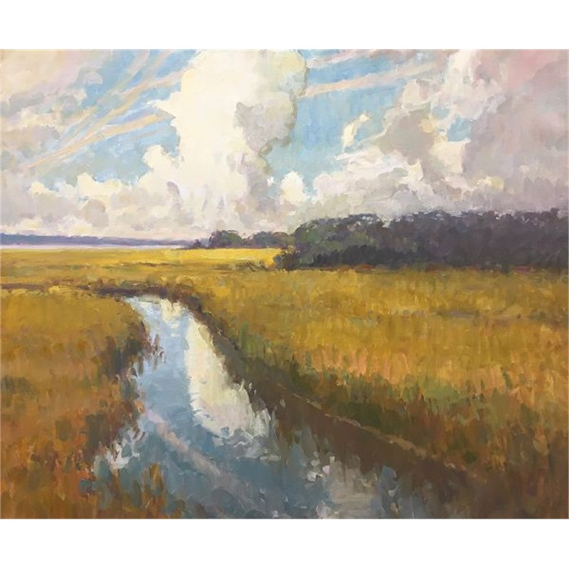 Marsh Drama (Shem Creek)