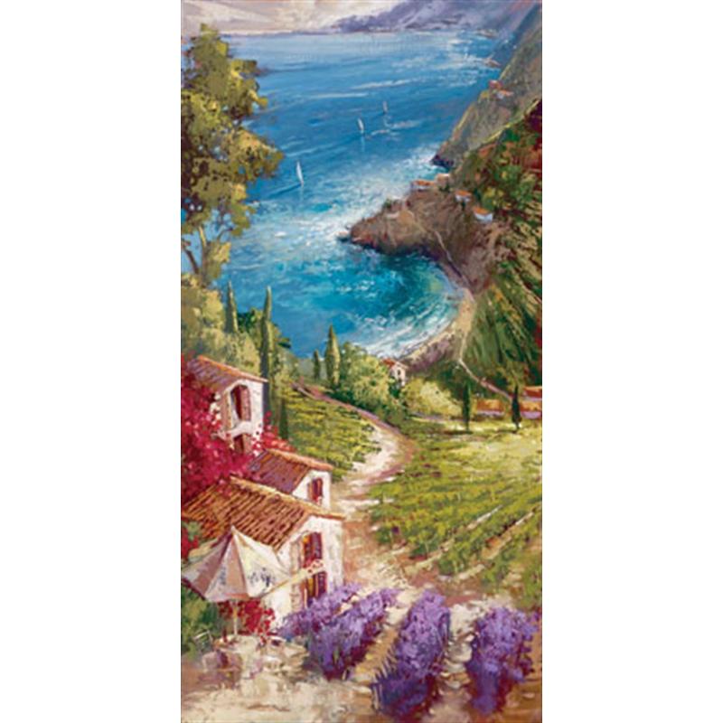 Amalfi Vineyard (/150), 2019