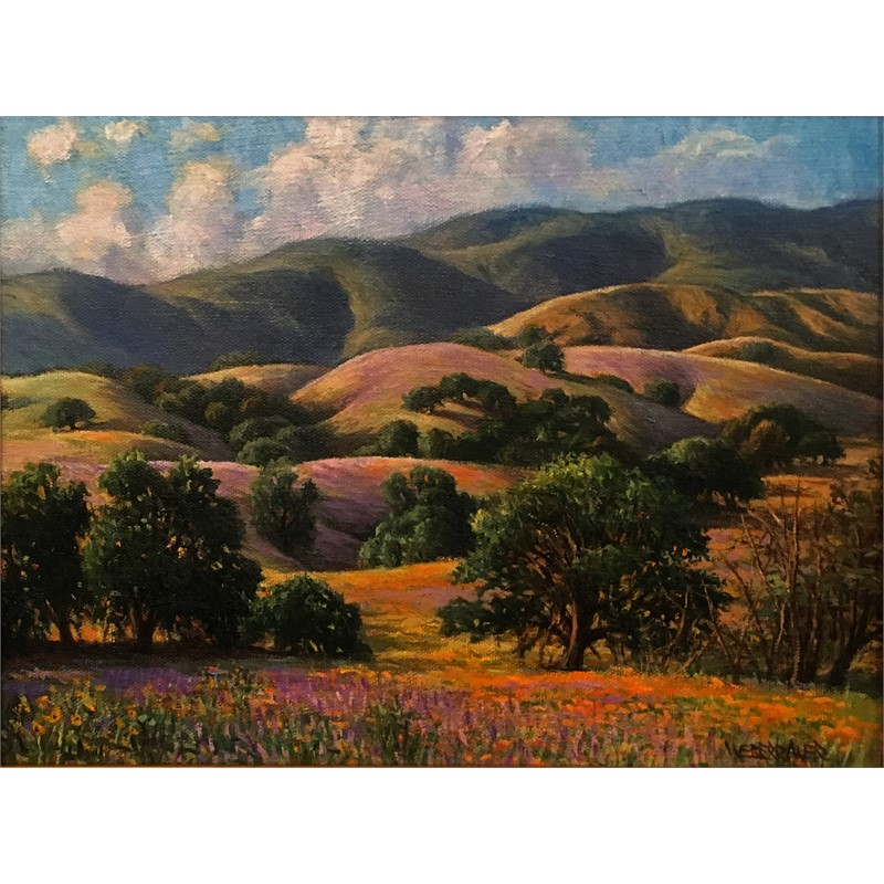 California Fields