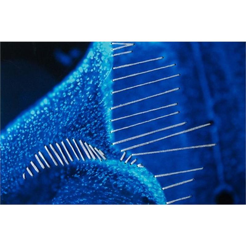 Molecular Stitch 3, 2014