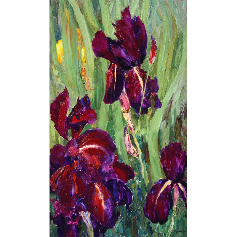 Purple Irises with golden Companions by Alan Wolton