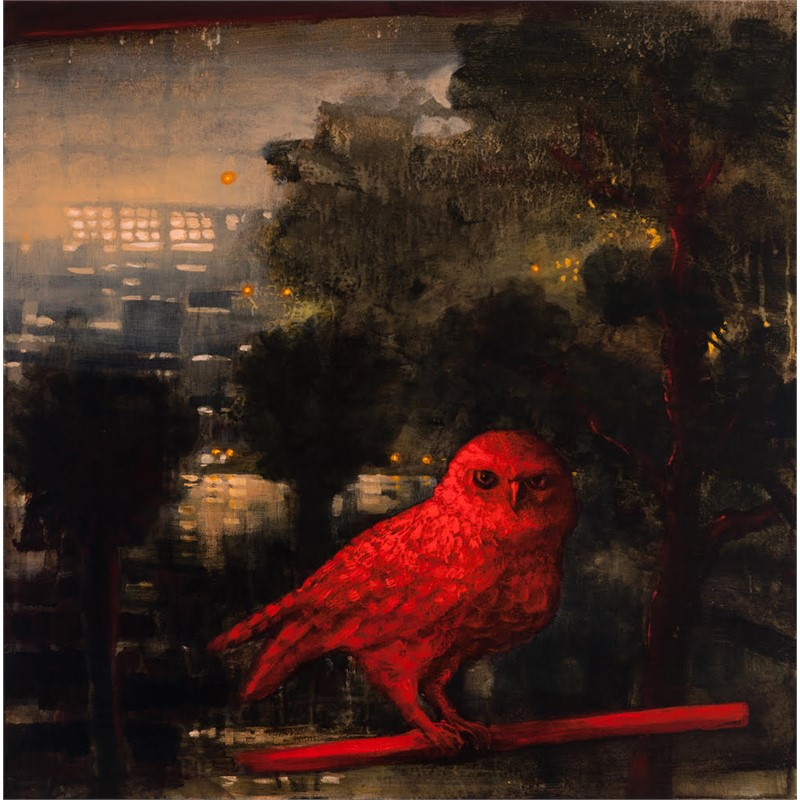 The Hidden Bird, 2018