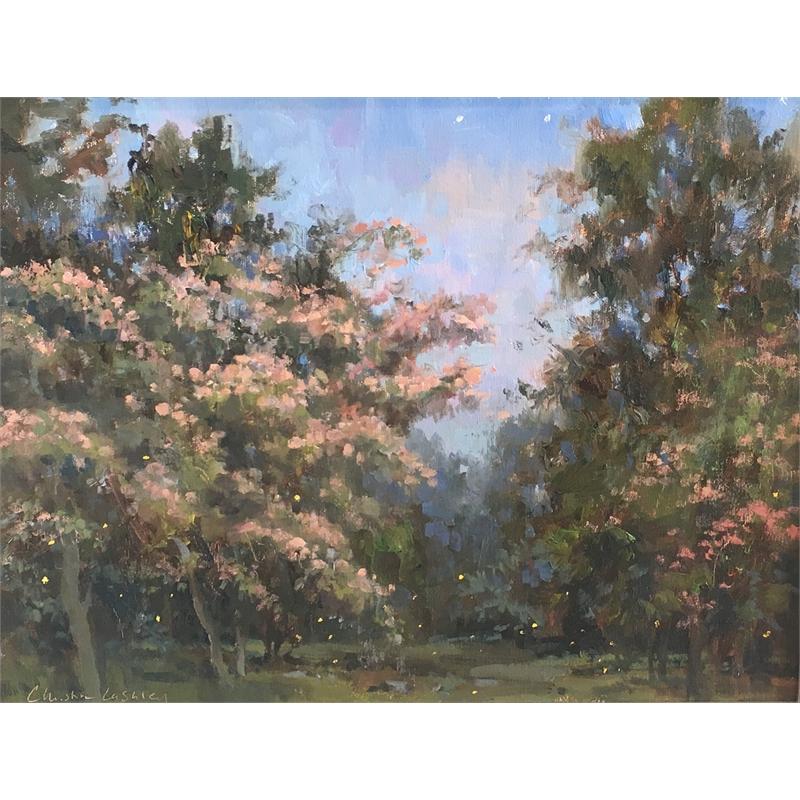 Mimosa Twilight