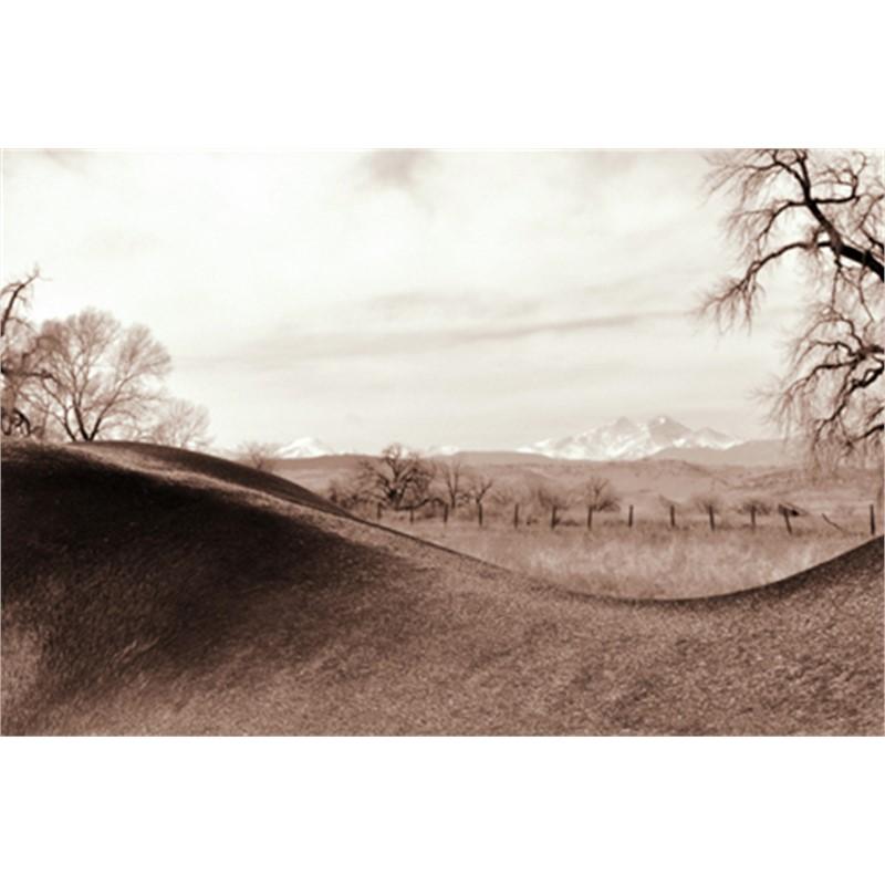 Back Swoop Landscape 2/18, 2012