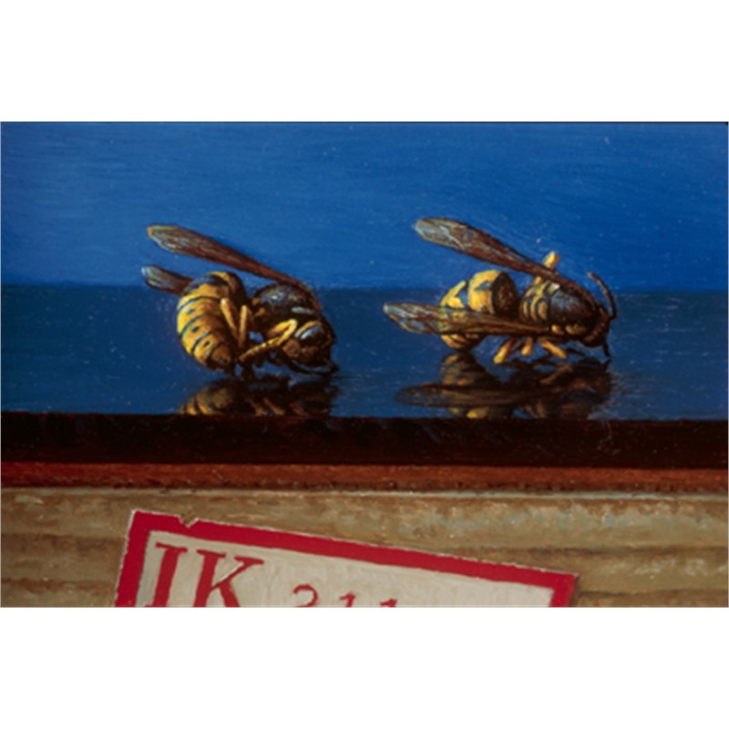 Two Wasps