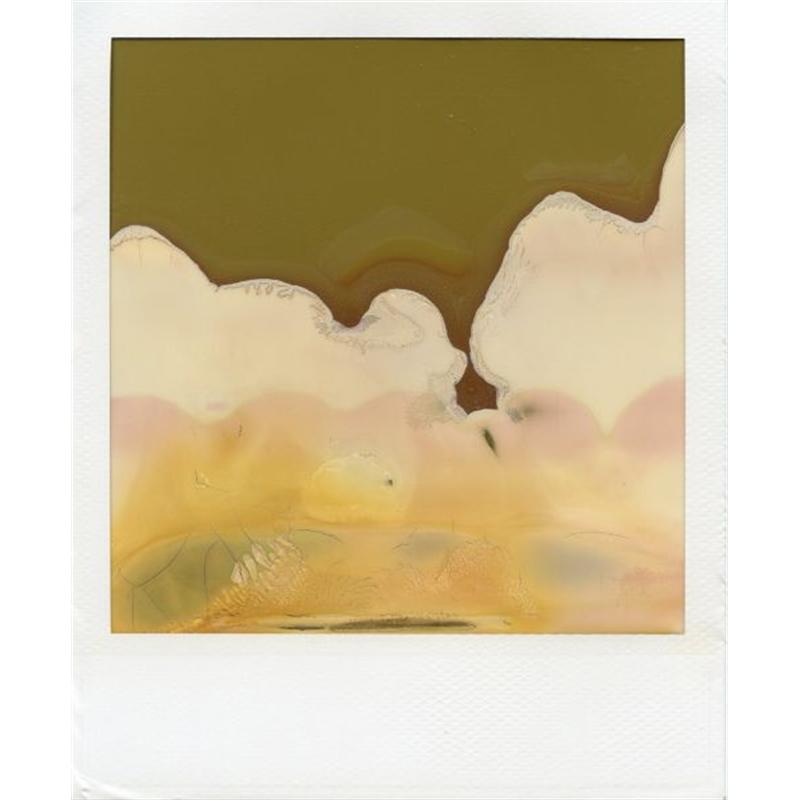Shan Shui #4, 2006