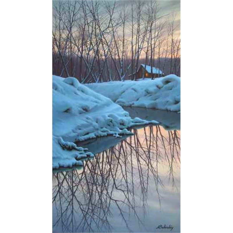 Winter Reflections (0/195)