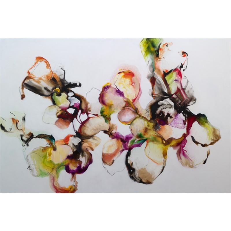 Orchidia, 2018