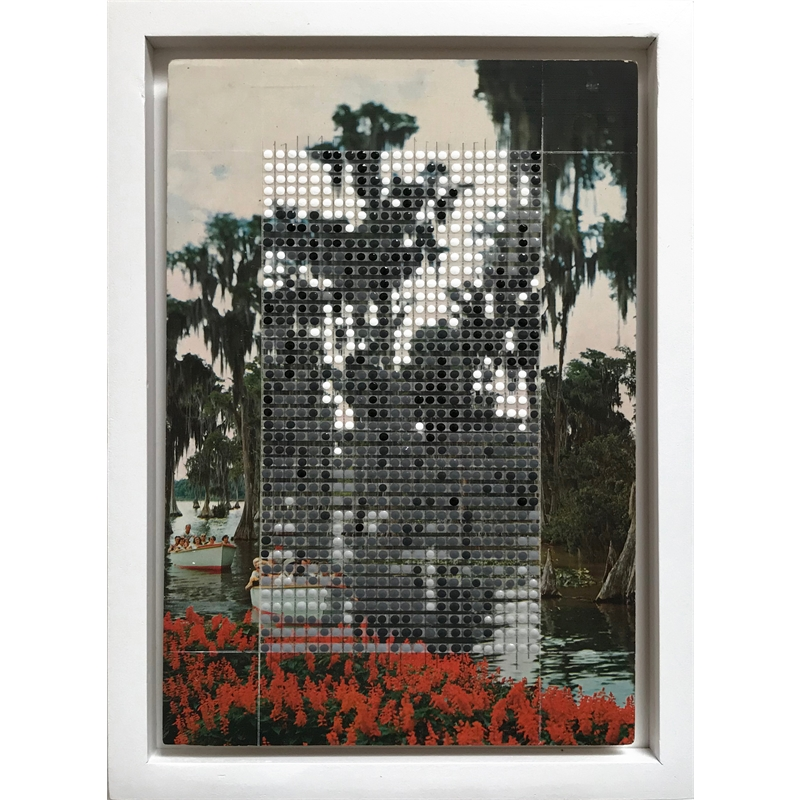 Borrowed Landscapes Study No.153/FL, Winter Haven, Cypress Gardens, 2020